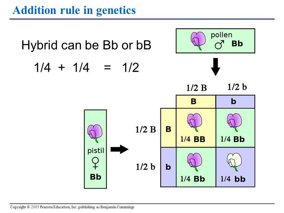 addition law of probability pdf