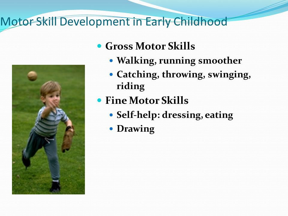 motor skill What's the difference between fine and gross motor skills the babycenter editorial team motor skills are motions carried out when the brain, nervous system, and.