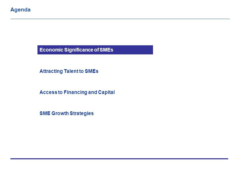 Executive Summary Small And Medium Enterprises Smes Are A Major