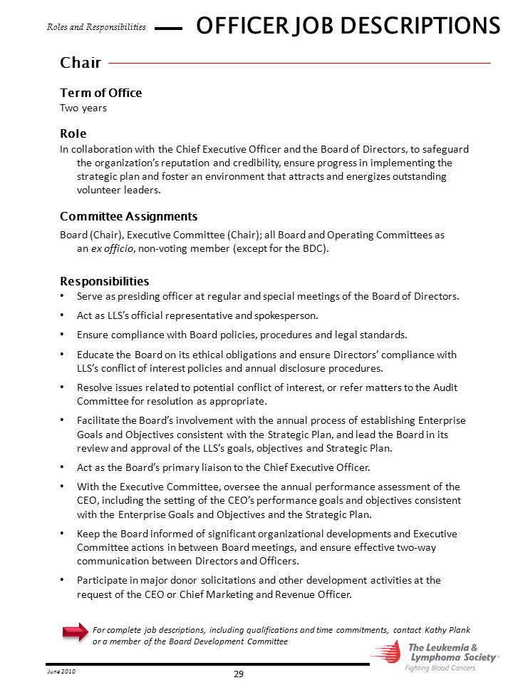 OFFICER JOB DESCRIPTIONS  Chief Executive Officer Job Description