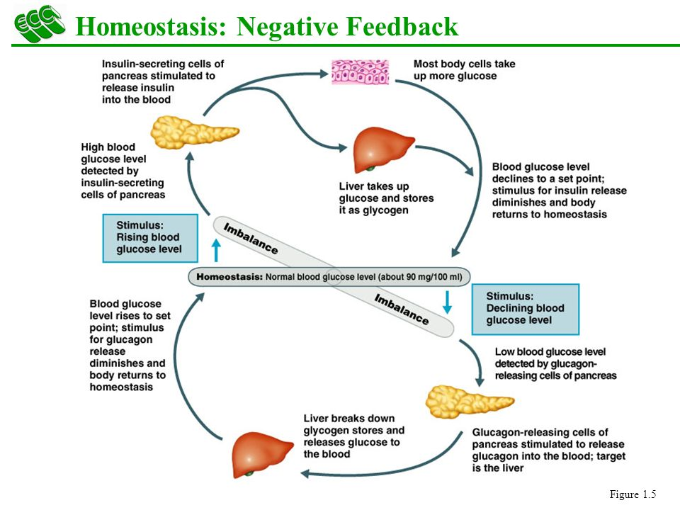 how to respond to negative feedback