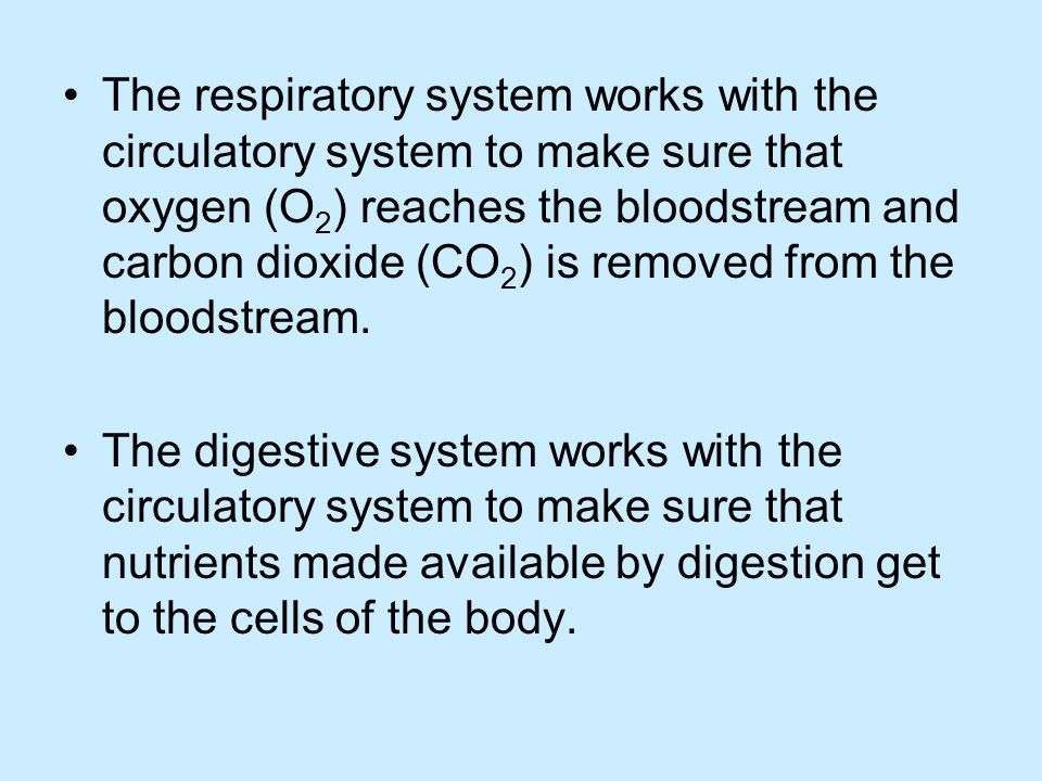 The respiratory system works with the circulatory system to make sure that oxygen (O2) reaches the bloodstream and carbon dioxide (CO2) is removed from the bloodstream.