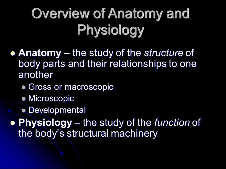 A complete overview of anatomy and physiology | Coursework Service