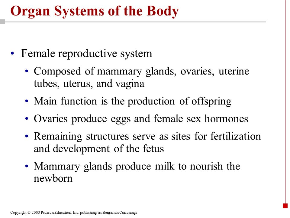 an introduction to the mammary glands and the role of hormones in the production of milk Prolactin (prl) plays a key role in mammary growth, and thus  prl are not limiting for milk production  score of mammary glands throughout lactation in.