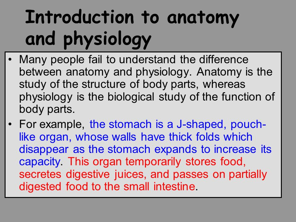 Nice What Is The Difference Between Anatomy And Physiology Adornment ...