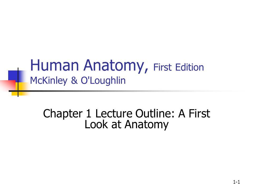 Mckinley Human Anatomy Gallery - human anatomy organs diagram