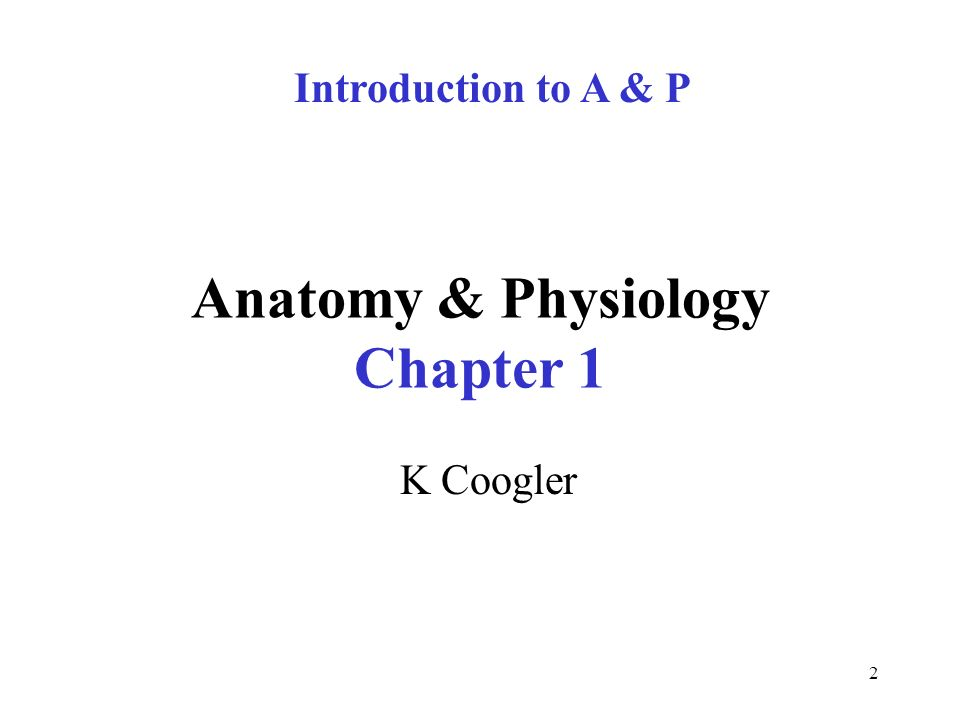 Atemberaubend Anatomy And Physiology Video Lectures Ideen ...