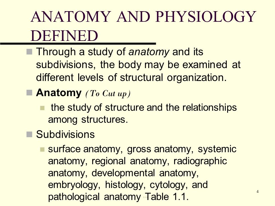An Introduction to the Human Body Lecture Outline - ppt download
