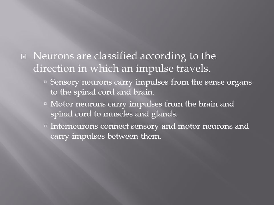 Neurons are classified according to the direction in which an impulse travels.