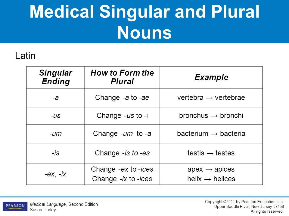 1 The Structure of Medical Language. - ppt video online download