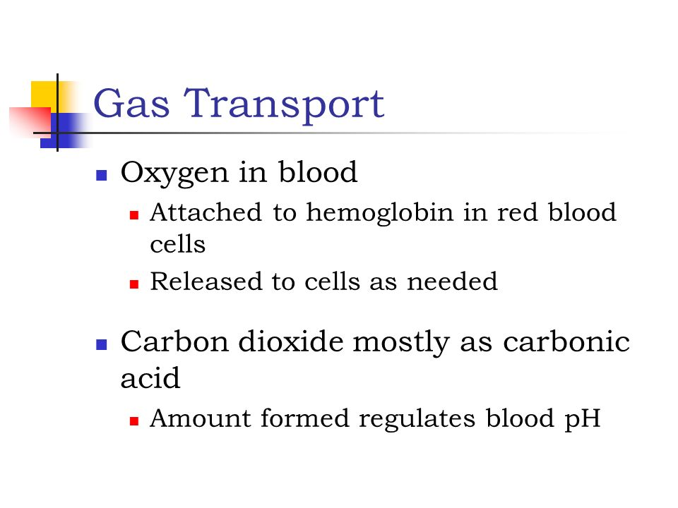 Gas Transport Oxygen in blood Carbon dioxide mostly as carbonic acid