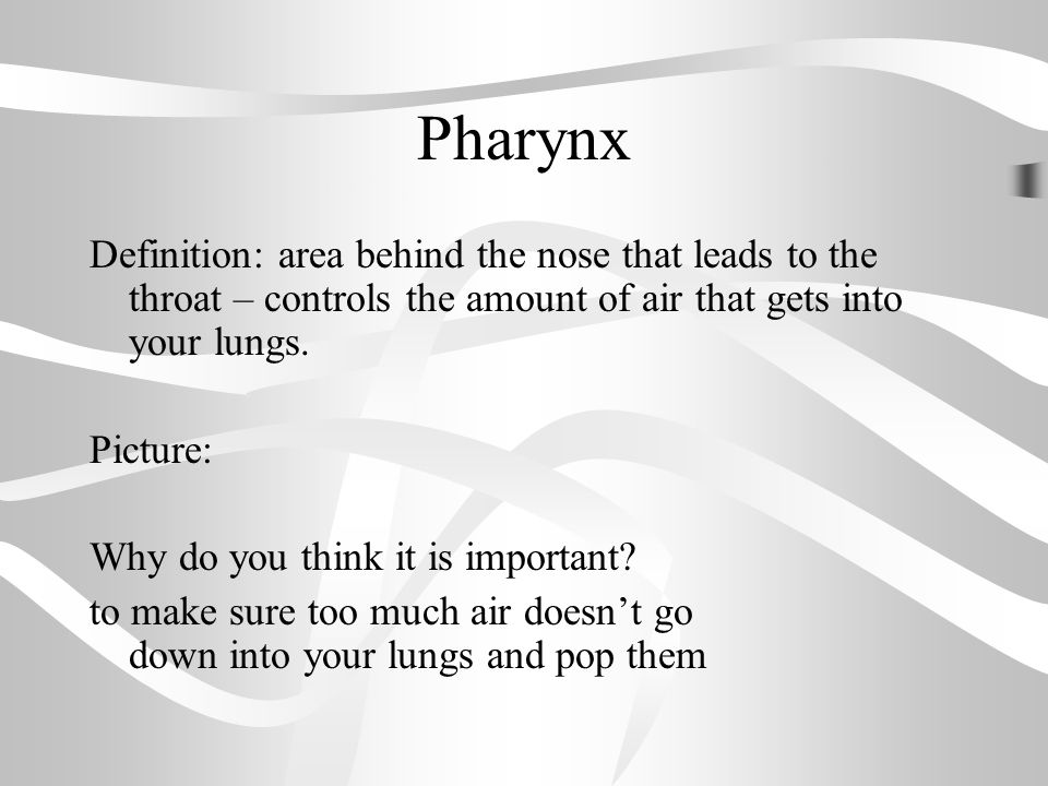 warm up respiratory system reading and questions. - ppt download, Human body