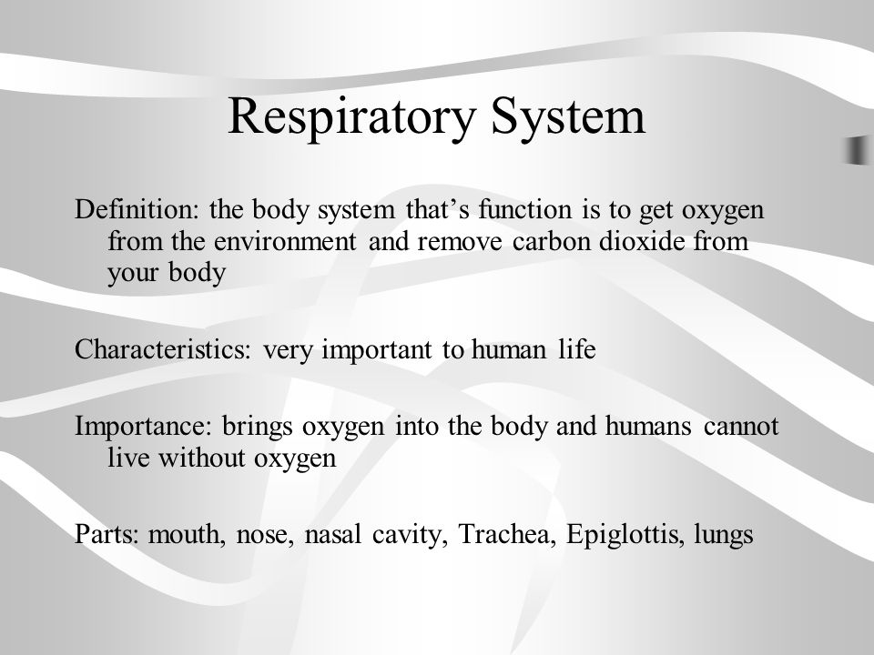 warm up respiratory system reading and questions. - ppt video, Human Body