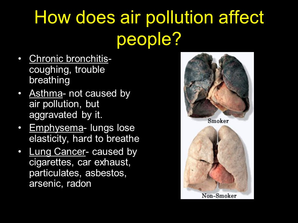 how does cars cause air pollution The effects of air pollution pollutants from vehicle exhaust can affect more than just your lungs indeed, tailpipe pollutants pose health risks at every stage of life, and can even cause.