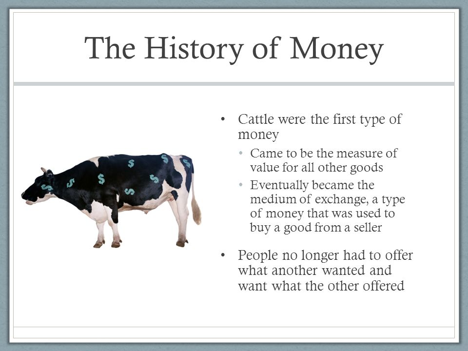 an introduction to the history of money Introduction physical characteristics - shibas introduction this may be your first glimpse of a shiba cute huh the shiba is probably one of the most universally appealing of all.
