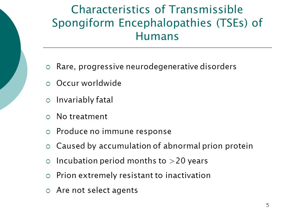 transmissible spongiform encephalopathies tses Transmissible spongiform encephalopathies (tses) the diseases are characterised by a degeneration of brain tissue giving it a sponge-like appearance tses are caused by a prion (also known as prpres), which is an abnormal form of a protein (known as prp c .