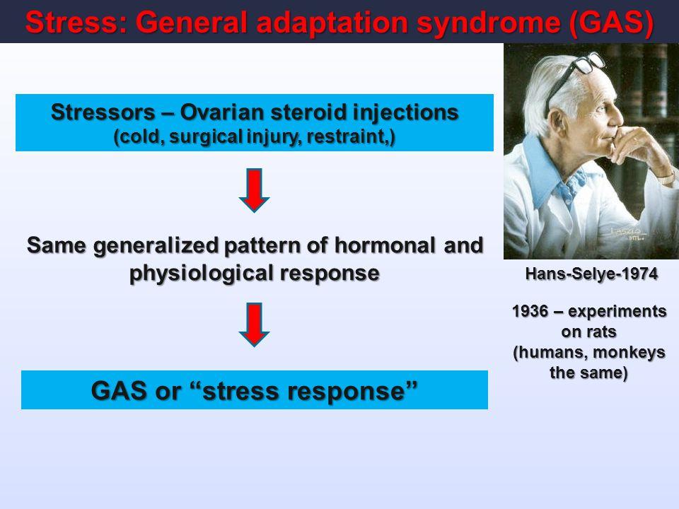 endogenous steroid hormones