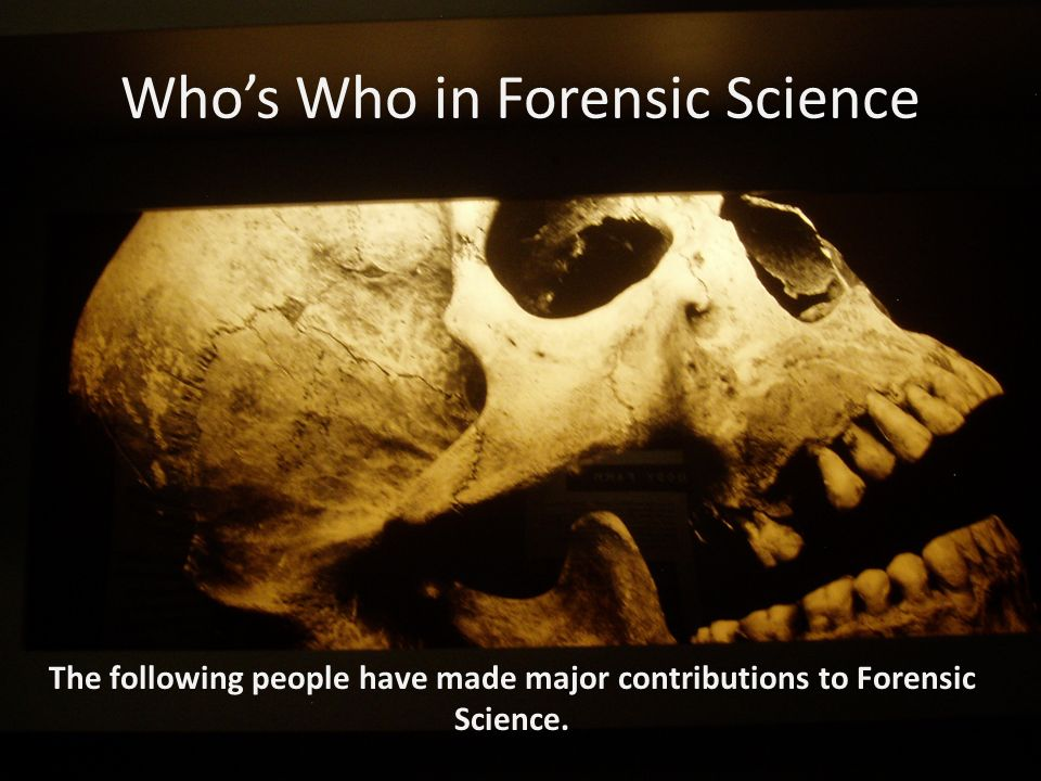 an examination of classification of crime through history Rape is the most underreported crime in america implications for sexual assault forensic medical examinations in sexual assault cases the forensic medical examination is a critical part of evidence collection.