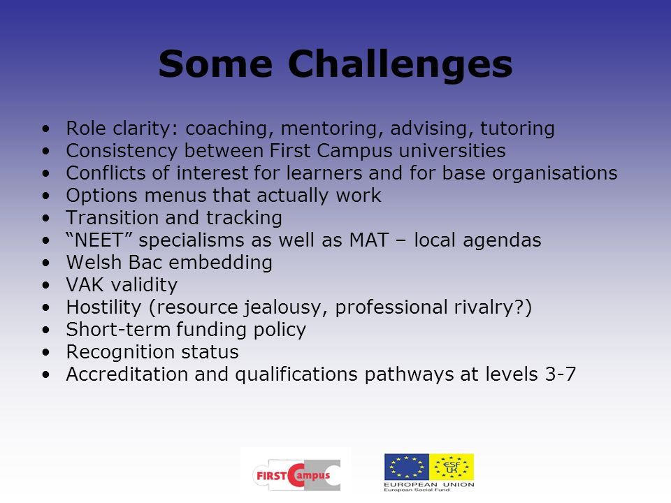 Some Challenges Role clarity: coaching, mentoring, advising, tutoring