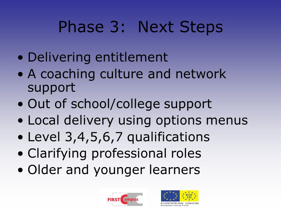 Phase 3: Next Steps Delivering entitlement