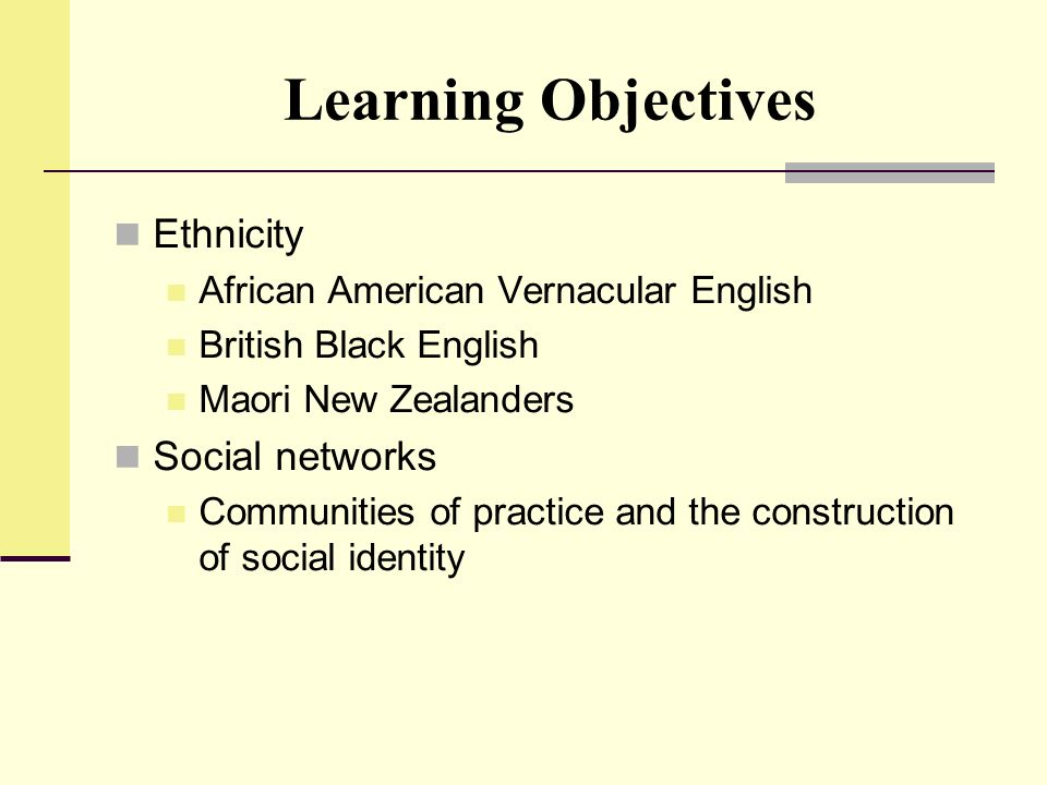Learning Objectives Ethnicity Social networks