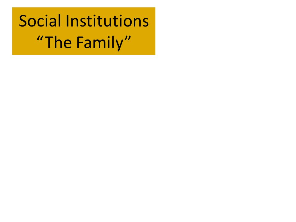 social institution of the family The family is the basic social institution in the society it functions as the basic unit which produces future generations and provides love and affection to the children.