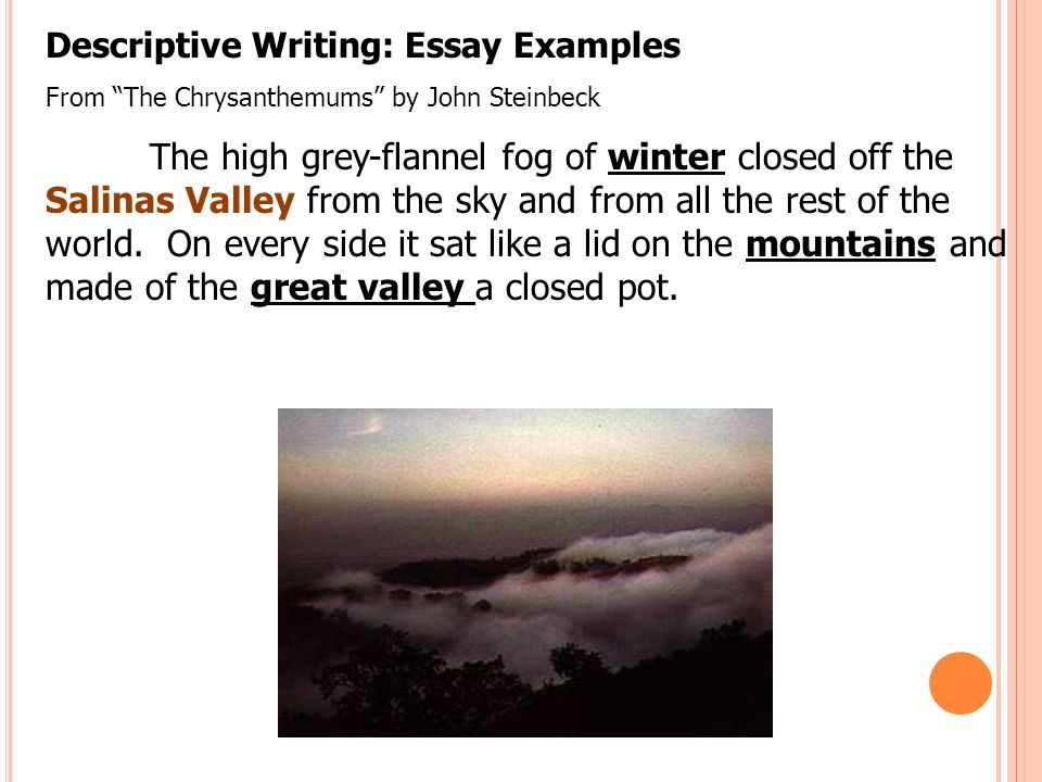 minute on page in the brief bedford reader look at the  16 descriptive writing essay examples