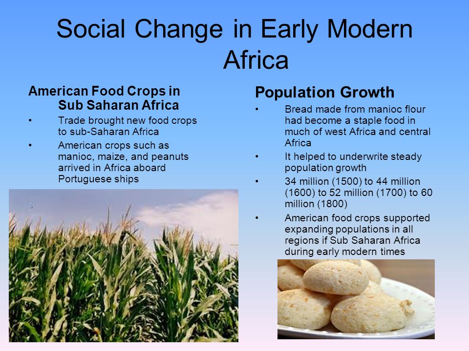 Africa and the atlantic world ppt video online download for African crops and slave cuisine
