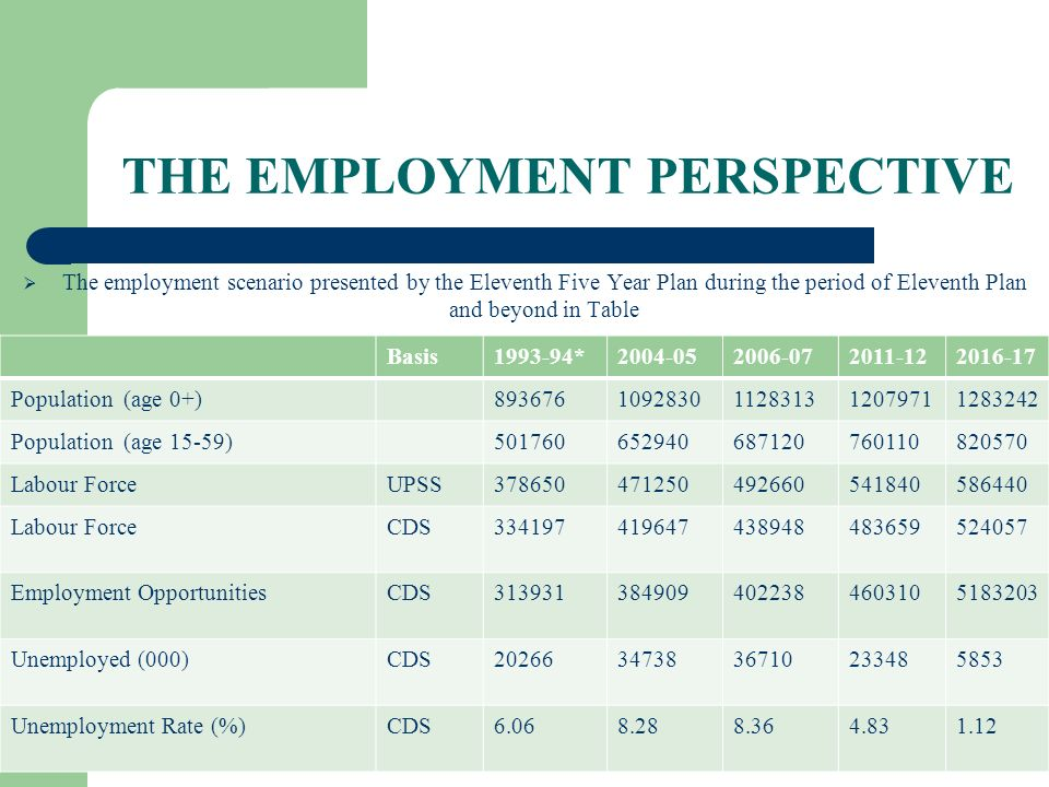 THE EMPLOYMENT PERSPECTIVE