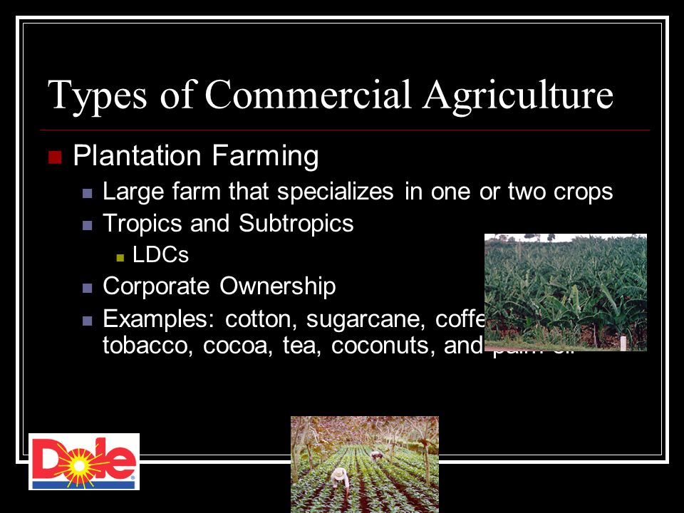 commercial vs subsistence agriculture One of the advantages of subsistence farming is that it is cost effective the reason is that it does not require the huge investments as would otherwise have been needed by a commercial farmer.