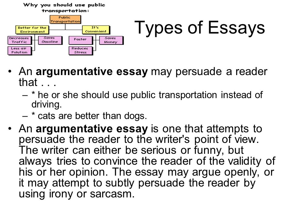 the essay an essay is a short piece of writing that discusses types of essays an argumentative essay persuade a reader that he