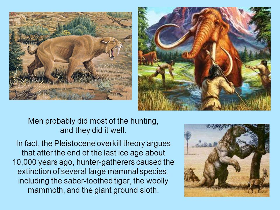 a discussion on the different theories on the ice age in the last extinction There are many different theories about why species that survived the last ice age will be unable wwwlitchartscom/lit/the-sixth-extinction/chapter.