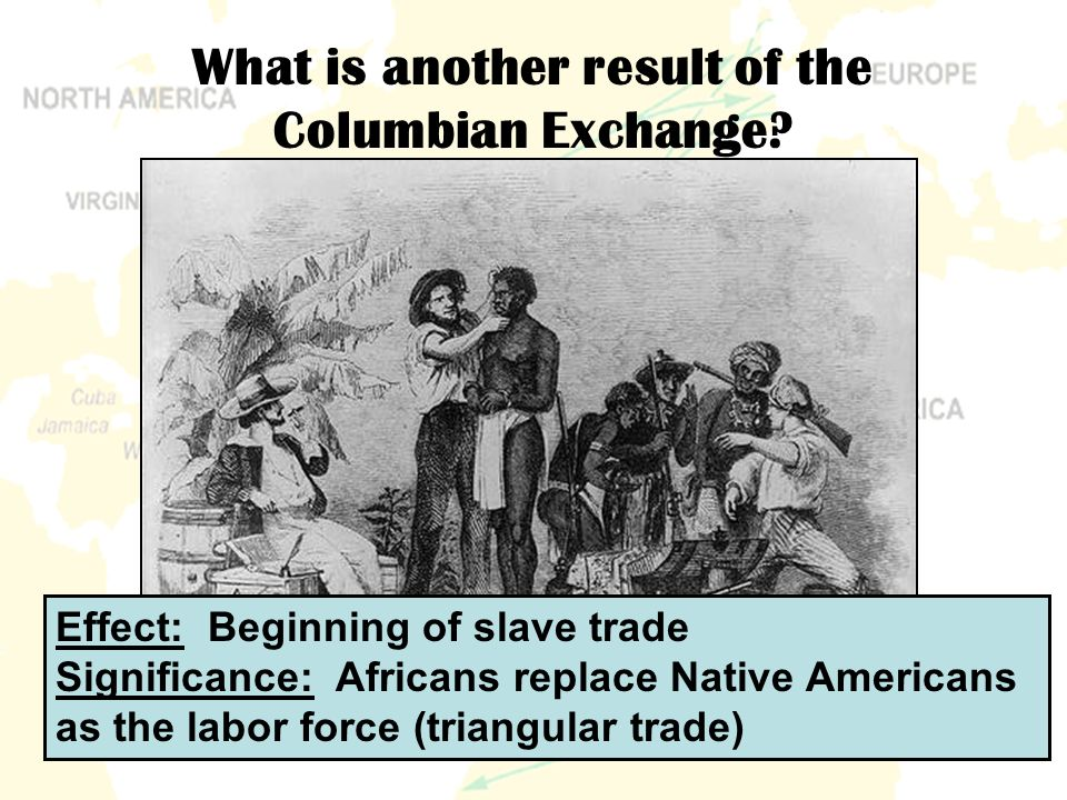 the effect of the slave trade The transatlantic slave trade the 9th through the 15th centuries were times of great struggle in europe the european powers struggled with one another for territorial and commercial dominance.