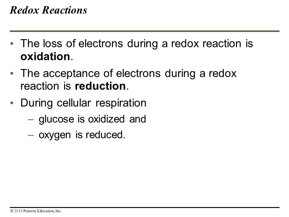 Cellular Respiration Obtaining Energy From Food Ppt