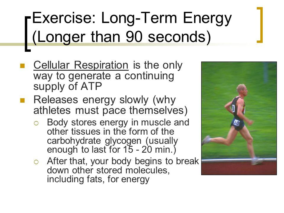 Cells Need Energy 1. Organisms obtain energy from food ...