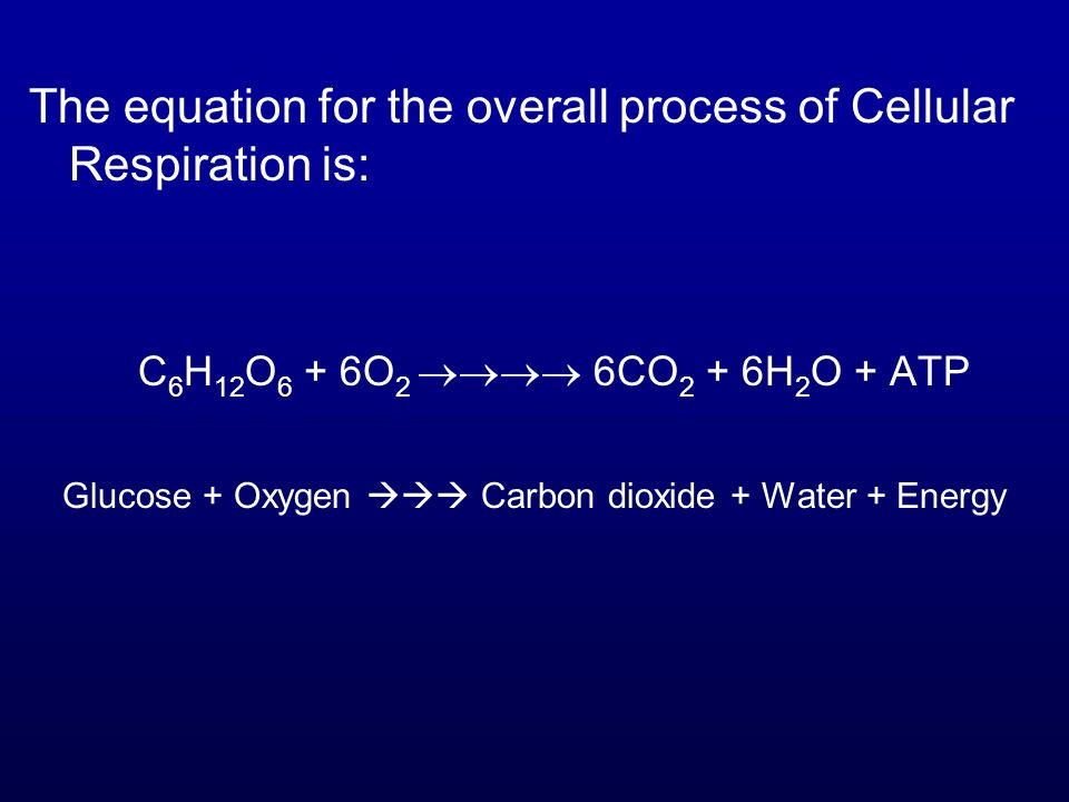 Glucose + Oxygen  Carbon dioxide + Water + Energy