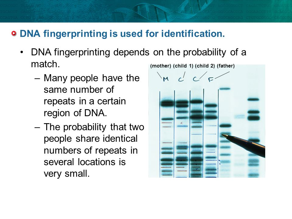 an essay about hugo and dna identification