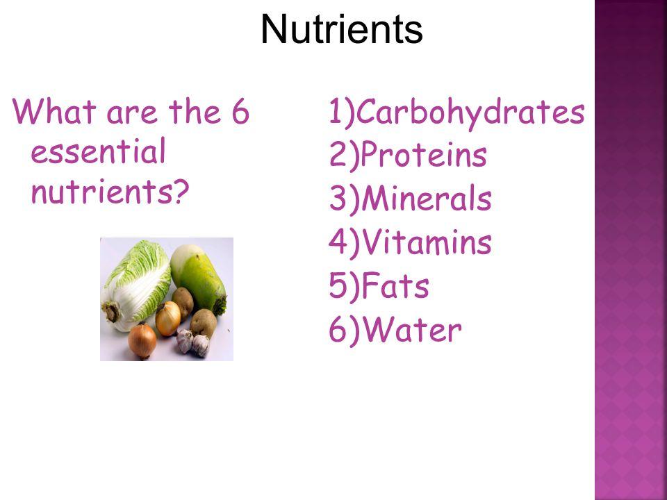 Nutrition. - ppt download
