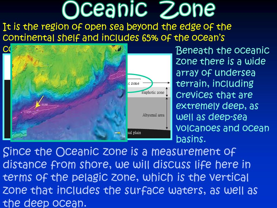 Oceanic Zone It is the region of open sea beyond the edge of the continental shelf and includes 65% of the ocean's completely open water.