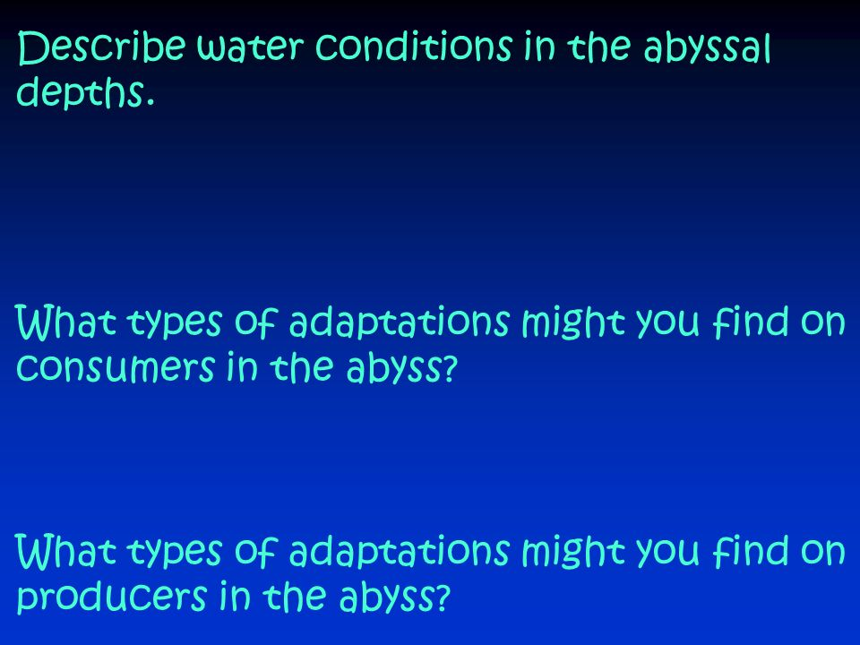 Describe water conditions in the abyssal depths.