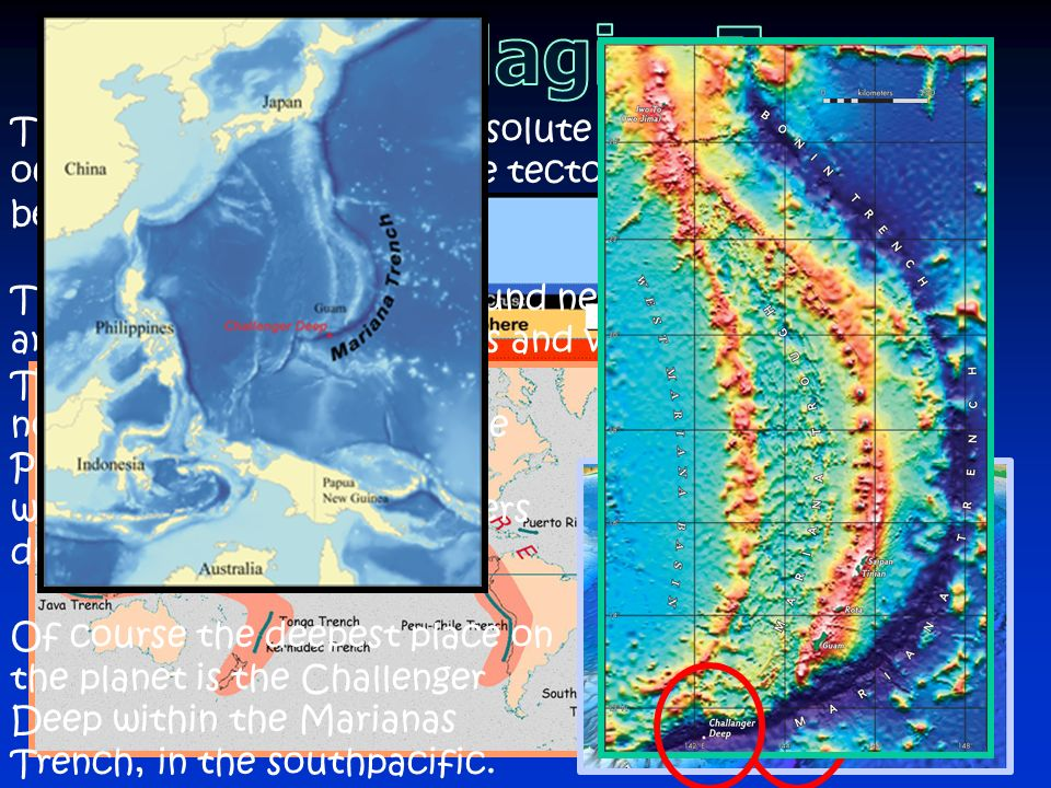 Hadalpelagic Zone This zone represents the absolute deepest places in the ocean. They exist where one tectonic plate subducts beneath another.