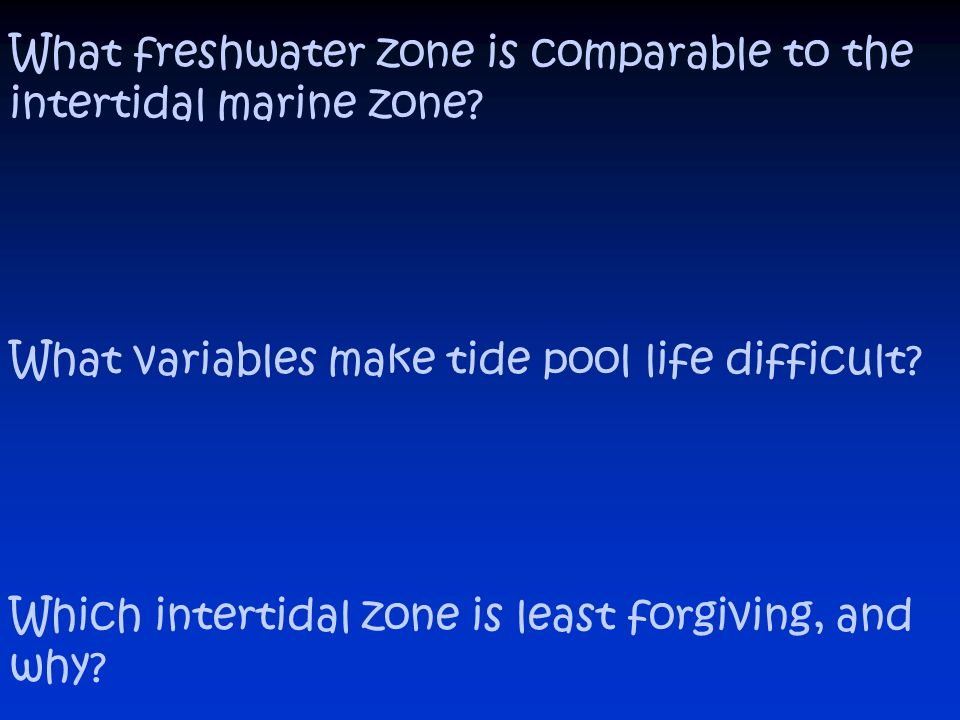 What freshwater zone is comparable to the intertidal marine zone