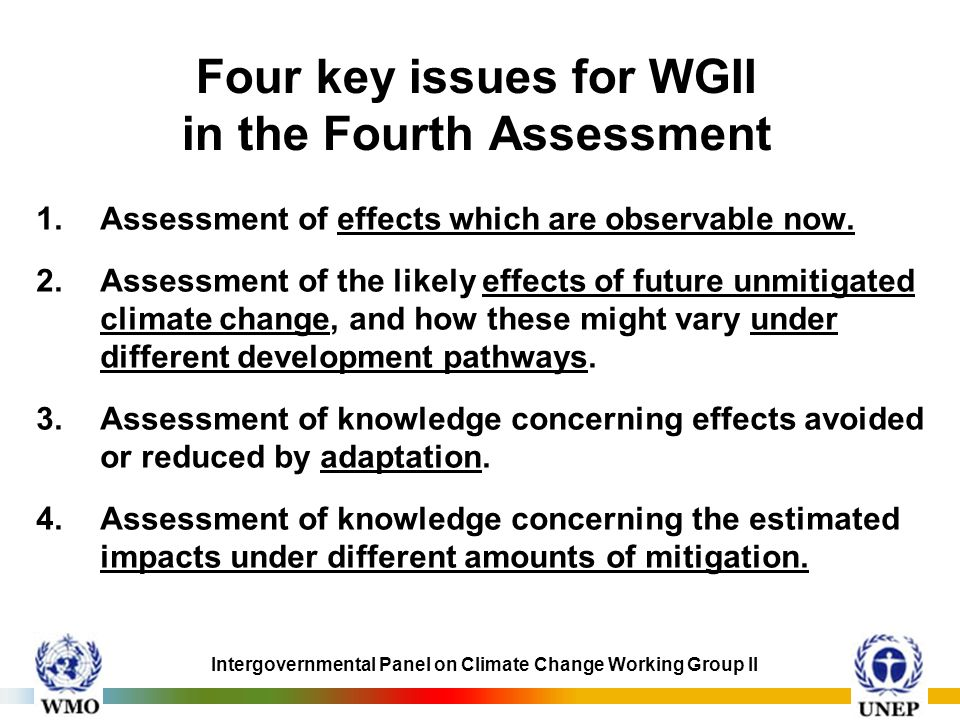 Four key issues for WGII in the Fourth Assessment