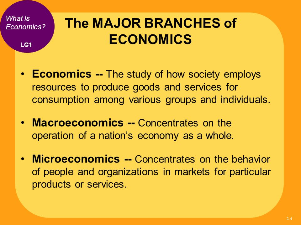 Branches of economics - homeworkdoer.org