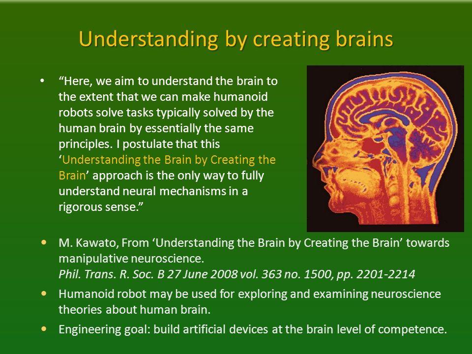 neuromarketing exploring the brain of the consumer pdf