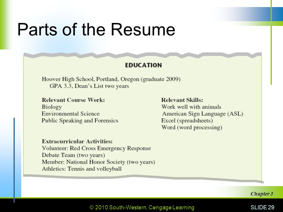 29 parts of the resume chapter 3
