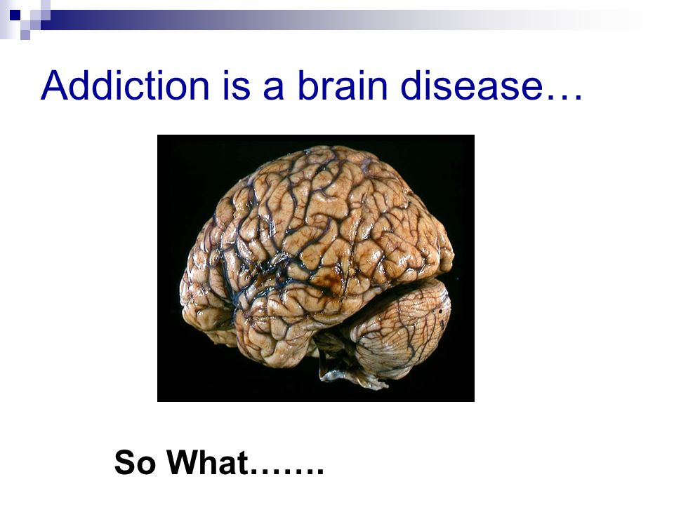 addiction as a disease a crucial classification Check out our compiled list of resources from the cdc, white house, samhsa, and nida about drugs, substance abuse, addiction, and communities at risk integrated prevention services for hiv infection, viral hepatitis, sexually transmitted diseases, and tuberculosis for persons who use drugs.