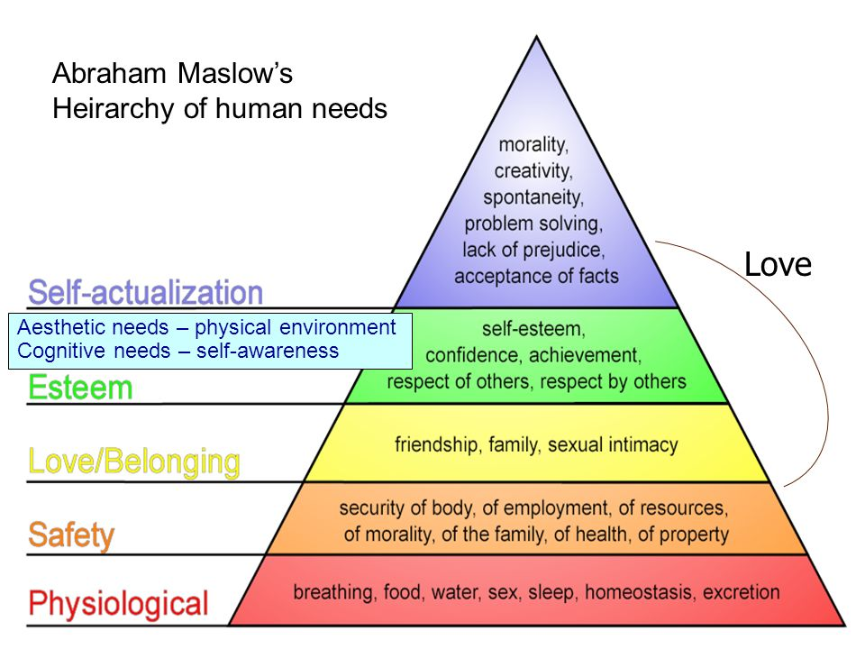 abraham maslow primate dominance behavior Abraham maslow and the hierarchy of human needs abraham harold maslow was born on april 1, 1908 in brooklyn, new york  he pursued a new line of research, investigating primate dominance behavior and sexuality he received his ba in 1930, his ma in 1931, and his phd in 1934, all in the field of psychology, all from the university of.