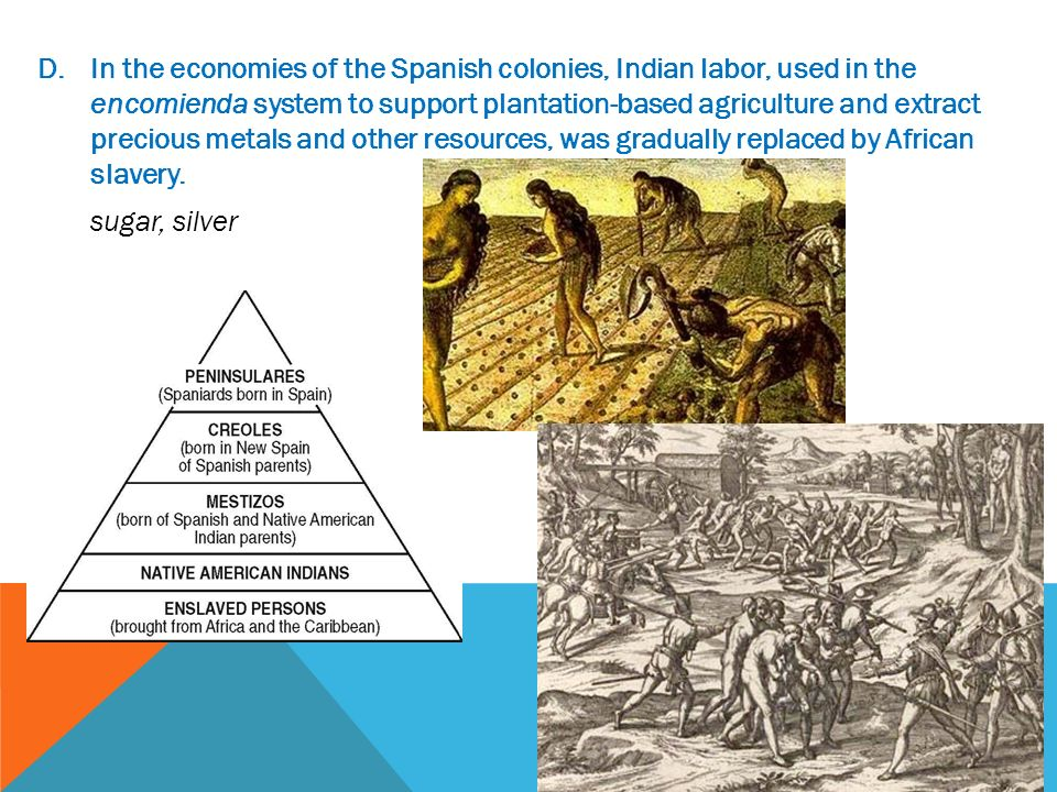 encomienda system and african slave trade chocolate class