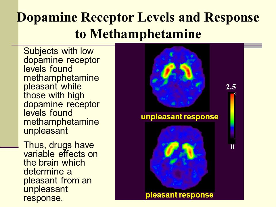 how high dopamine levels during sex